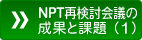 NPT再検討会議の成果と課題(2)